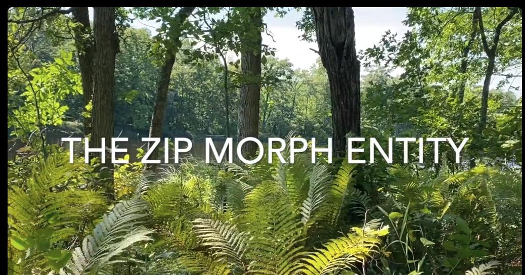 The Zip Morph Entity