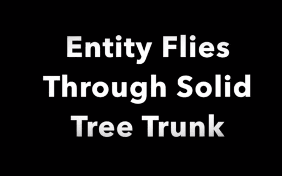 Entity Flies Through Solid Tree Trunk